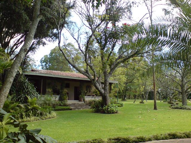Jardines del cementerio los parques ciudad de guatemala for Cementerio jardin