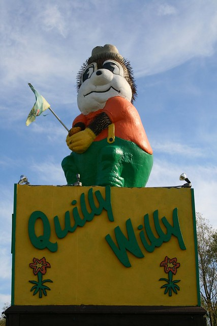 A Wary Quilly Willy