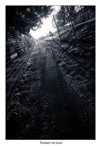 sunset fence path