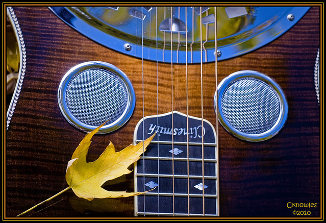 Photo:Clinesmith Dobro Guitar Autumn By Knowles Gallery
