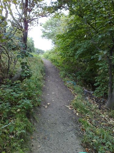 Steep & Narrow Path from Railway