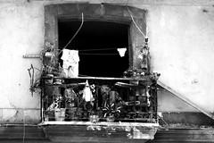 Havana, Desolazione