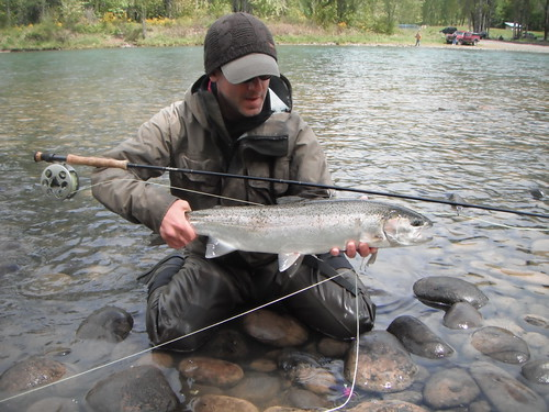The caddis fly oregon fly fishing blog mckenzie river for Willamette river fishing report