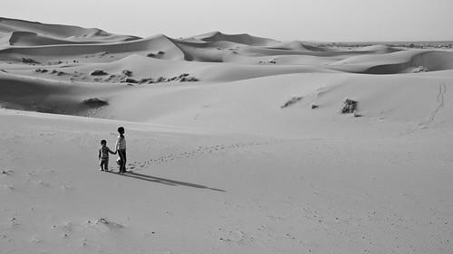 الصحراء الكبرى