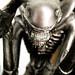 Alien (close) by cláudia f.