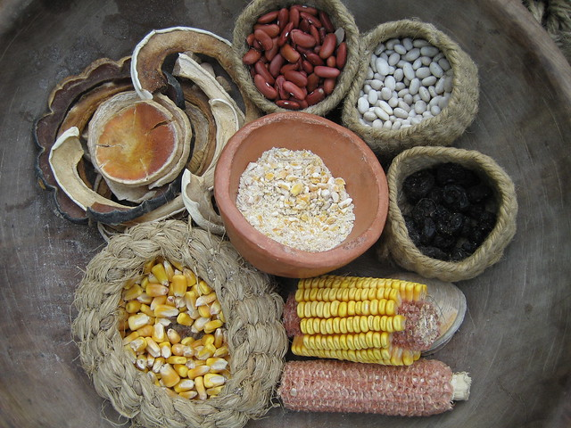 Foods of the Powhatan Nation | Explore imhopper's photos ...  Foods of the Po...