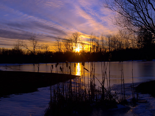 trees sunset sky ice nature clouds landscape photography evening pond pennsylvania cattails erie overtheexcellence kweaver2 olympuse520 vosplusbellesphotos micarttttworldphotographyawards micartttt kathyweaver