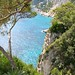Small photo of A Corner of Paradise in Capri