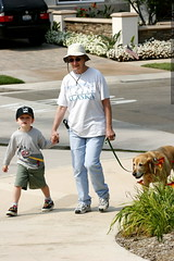 nick taking anna and jed for a walk    MG 2309