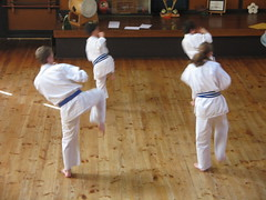 striking combat sports, individual sports, contact sport, sports, tang soo do, combat sport, martial arts, karate, taekkyeon, japanese martial arts, shorinji kempo,