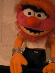 orange(1.0), puppet(1.0), textile(1.0), plush(1.0), stuffed toy(1.0), mascot(1.0), toy(1.0),