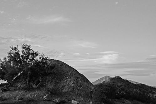 Papago Park, Row of Rocks by Juli Kearns (Idyllopus)