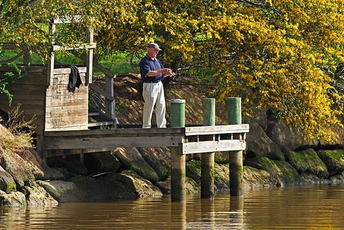 Maribyrnong River, Essendon, Victoria, Australia IMG_8347_Maribyrnong_River