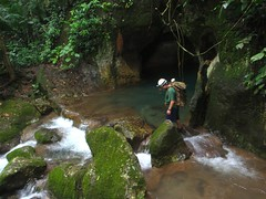 stream, waterfall, adventure, rainforest, rapid, river, creek, body of water, watercourse, forest, jungle, canyoning,