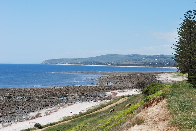 Header of Aldinga