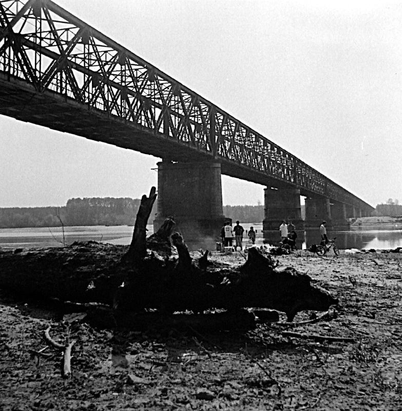 [Pavia] Ponte della Becca - dalla riva del Ticino