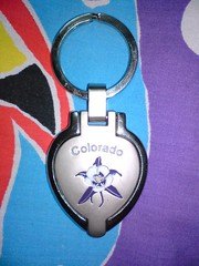 keychain, circle, blue,