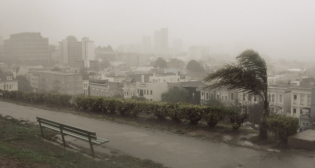 Rain and wind in San Francisco, at Alta Plaza (2010)