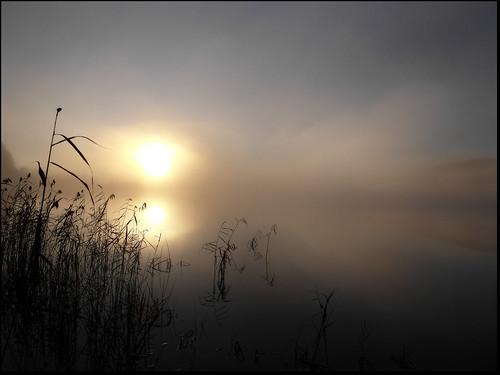 light mist water fog sunrise
