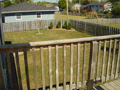 Fence and Deck (Before)