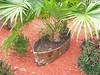 Palm Boat