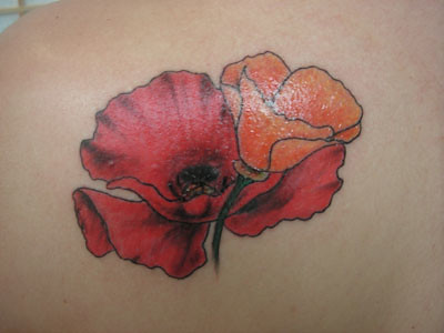 poppies on pinterest california poppies tattoo and california poppy tattoo. Black Bedroom Furniture Sets. Home Design Ideas