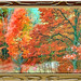 AUTUMNAL ART IN FRAME