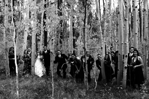 wedding blackandwhite bw me eric montana jake jennifer brian patrick steph tyler bridesmaids rian groomsmen mikel gregg mcgraw marah bridgid poff suedy ©tylerknottgregson thedonovans