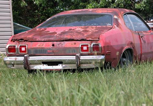 Car in Tall Grass