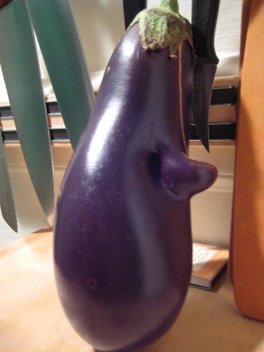 The Friendly Eggplant
