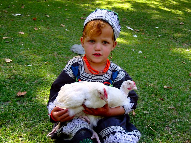 Cute Kalash Girl With Her Chickens