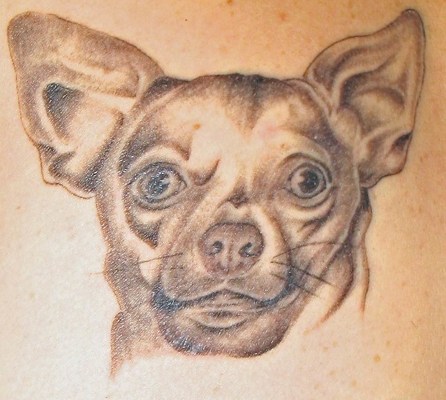 pet tattoos a gallery on flickr. Black Bedroom Furniture Sets. Home Design Ideas