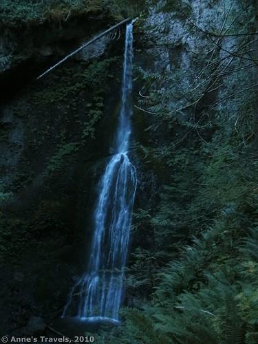 Marymere Falls in Olympic National Park, Washington