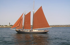 sail, sailboat, sailing ship, schooner, vehicle, sailing, ship, windjammer, thames sailing barge, mast, lugger, tall ship, watercraft, boat,