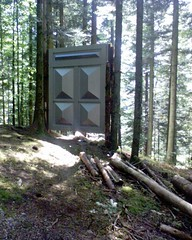 trail(0.0), outdoor structure(0.0), tree stand(0.0), outhouse(0.0), woodland(1.0), wood(1.0), tree(1.0),