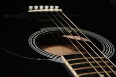 bassist(0.0), guitarist(0.0), electric guitar(0.0), jazz guitarist(0.0), bass guitar(0.0), string instrument(1.0), slide guitar(1.0), acoustic guitar(1.0), guitar(1.0), close-up(1.0), acoustic-electric guitar(1.0), string instrument(1.0),