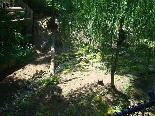 Virginia Trip Busch Gardens 2010 Flickr Photo Sharing