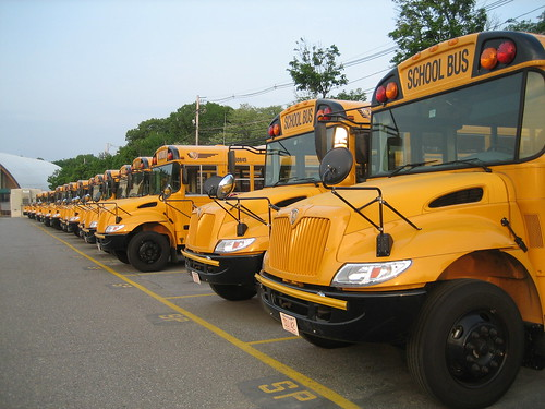 Endless line of school busses