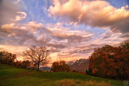 aut fresch geo:lat=4724978103 geo:lon=957123578 geotagged nofels österreich vorarlberg autumn morning sunrise glowing sky clouds fall landscape pink austria feldkirch