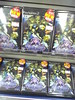 Odin Sphere on display
