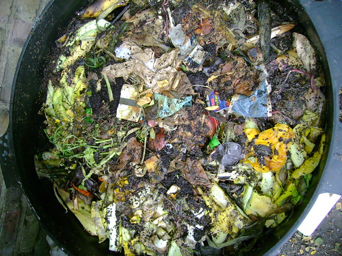Wormery Top Level: Food Waste