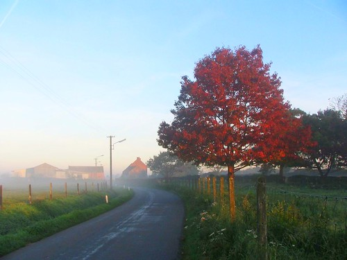 morning sunrise colours village belgium belgique belgië wallonie renej