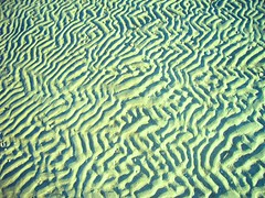 Patterns in the sand, Brighton Beach, Australia