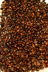 home roasted coffee beans    MG 3200
