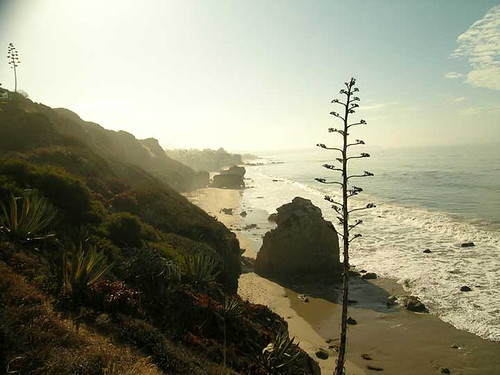 elephant-rock-beach-3061