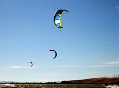 toy(0.0), individual sports(1.0), sports(1.0), windsports(1.0), wind(1.0), extreme sport(1.0), kitesurfing(1.0), sport kite(1.0),