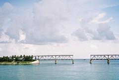 bridge/gap