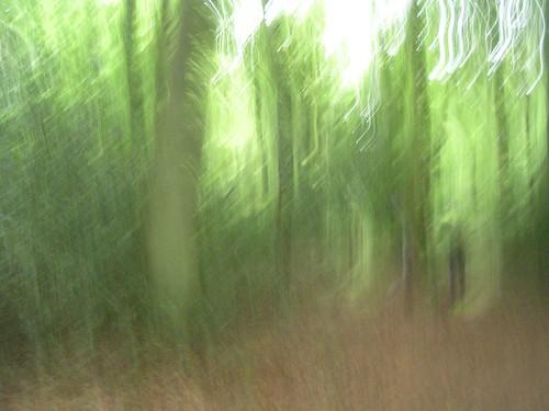 Impressionist wood
