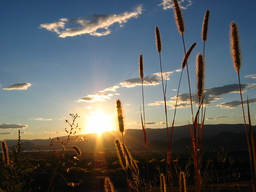 The Sun Sets on Mountains and Grasses Alike