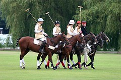 The Amazons Polo Team
